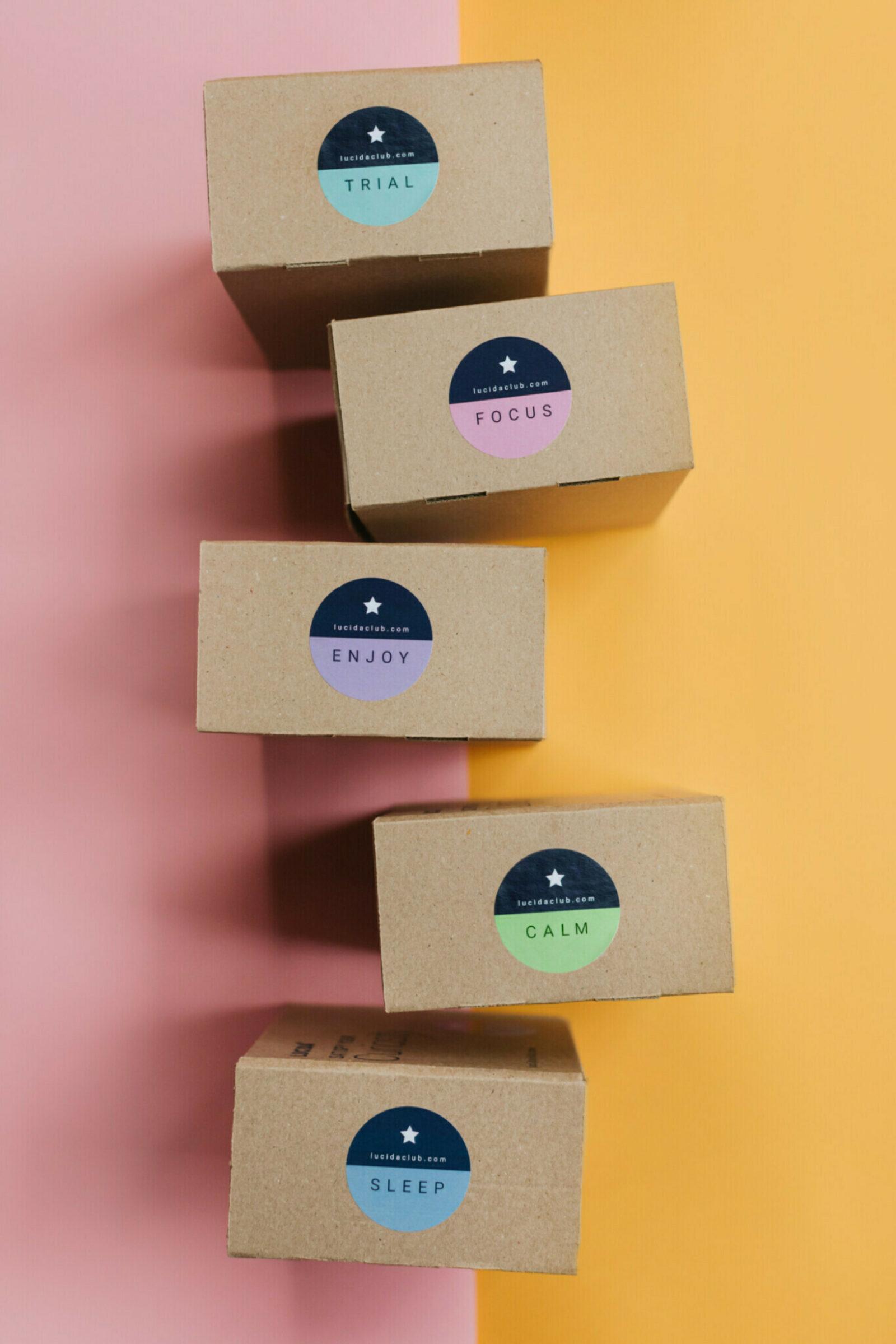Lucida Club Shacked Boxes Pink and Orange 1